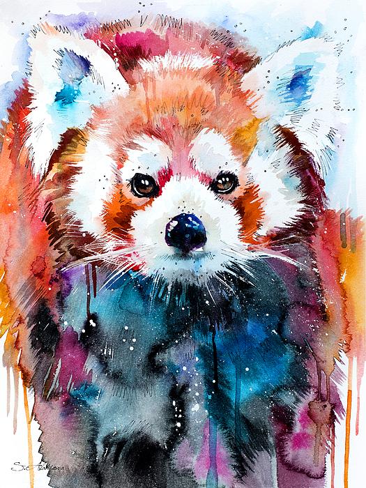 Slavi Aladjova - Red panda
