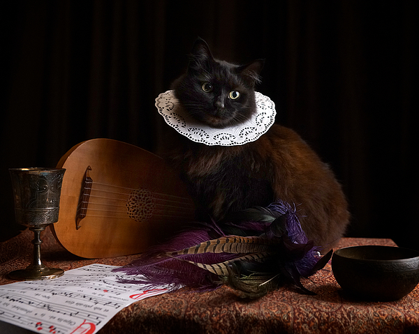 Tina Gutierrez - Renaissance Cat with Lute 1
