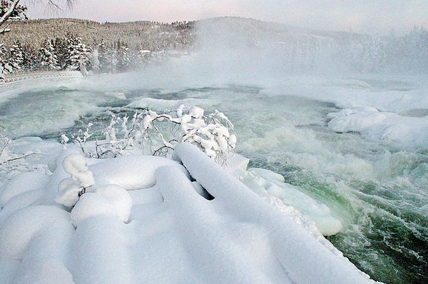 Tamara Sushko - River in winter