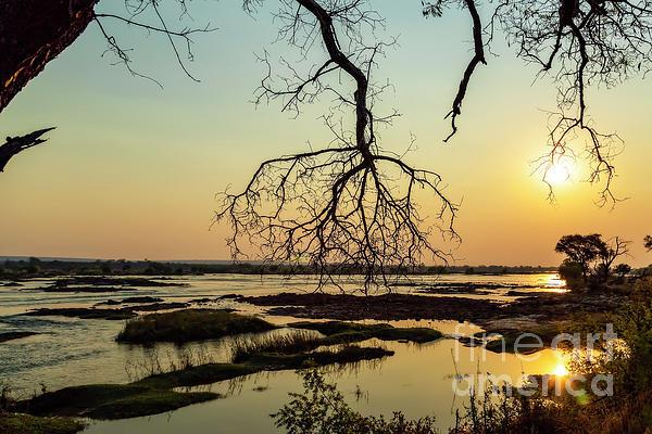 Kay Brewer - River Sunset in Botswana
