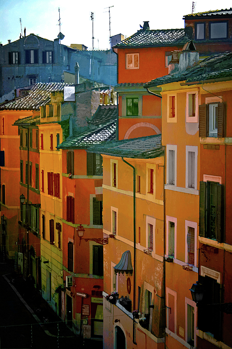 Terry Davis - Roman Street