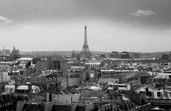 Bernard Jaubert - Roof of Paris. France
