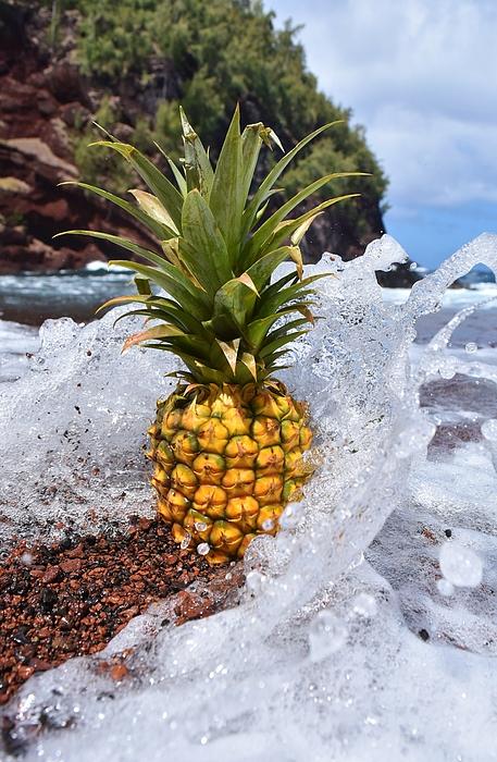 Kyle Prescott - Salty Sweet Aloha