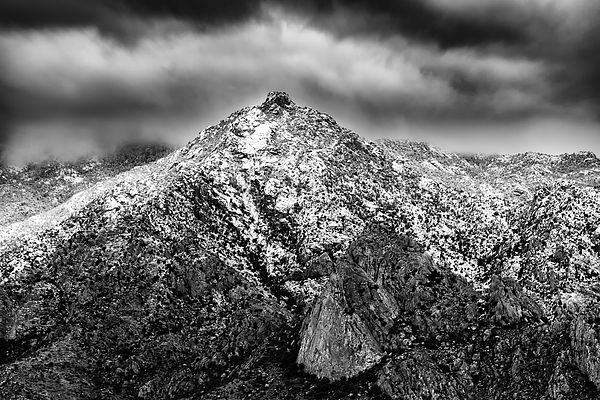 Samaniego Snow H59 Photograph