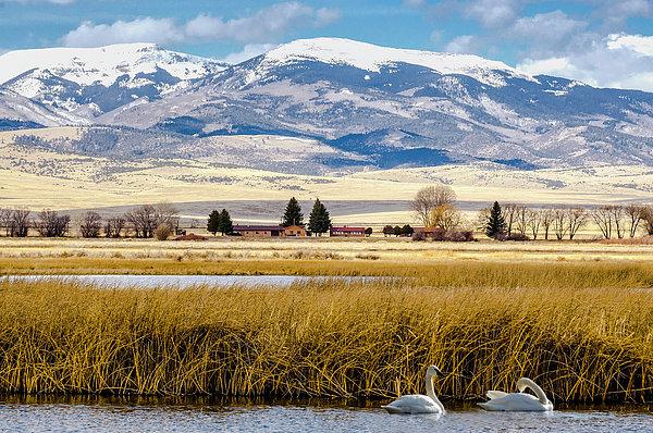 John Bartelt - San Luis Valley -  Colorado