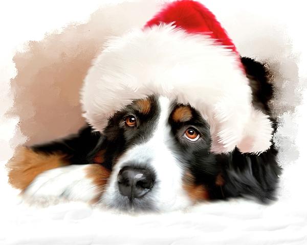 Mary Timman - Santa Dog