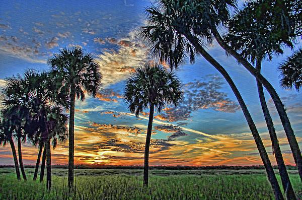 HH Photography of Florida - Savannah Sunset - Myakka River State Park