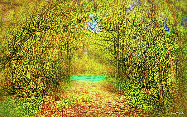 Joel Bruce Wallach - Scent Of Forest Path