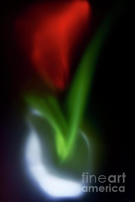 Alexander Vinogradov - SECRET of RED FLOWER.