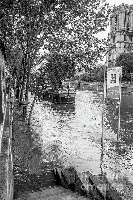 Liesl Walsh - Seine River Flooding at Notre Dame, Blk Wht