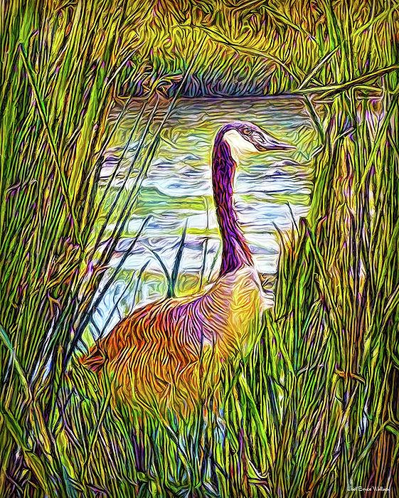 Joel Bruce Wallach - Serene Goose Dreams