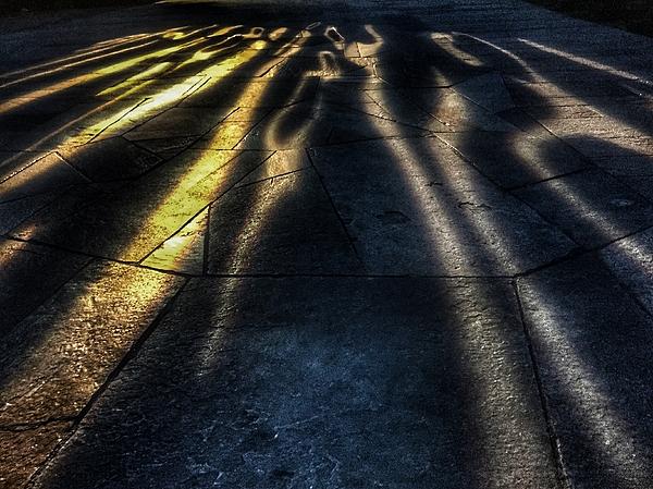 Julian Darcy - Shadow dancers