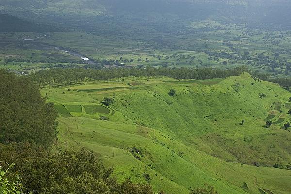 Sunil Kapadia - SKC 3565 The Emerald Valley