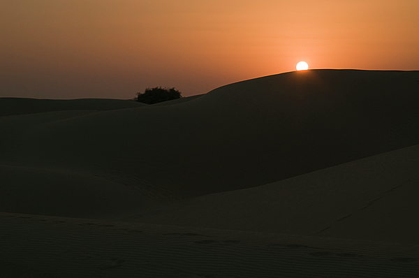 Sunil Kapadia - SKN 1496 Goodnight Earth