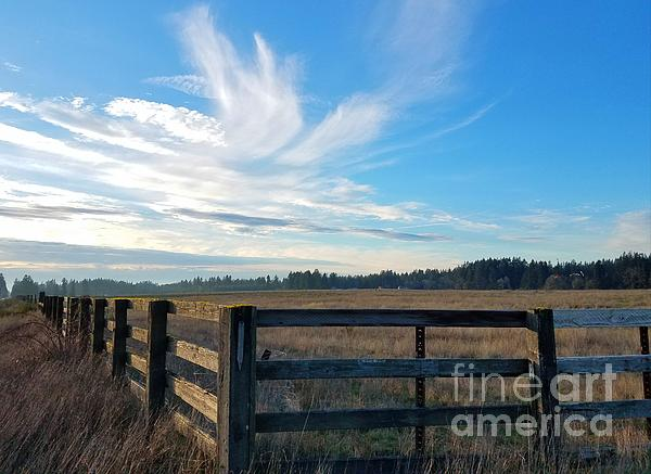 Jane Powell - Skyline above the farm
