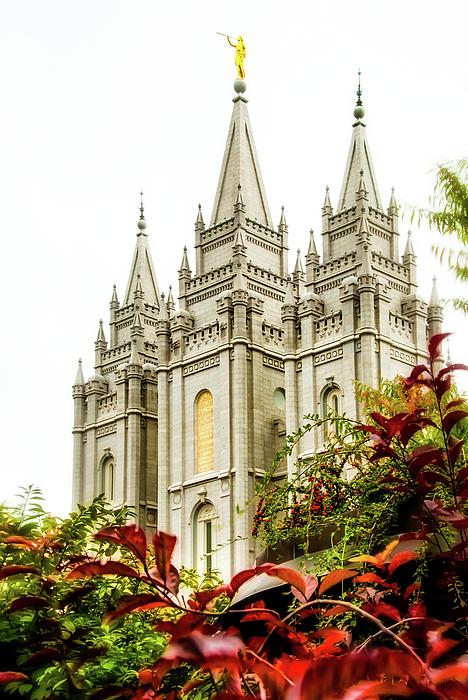 La Rae  Roberts - SLC Temple Angle