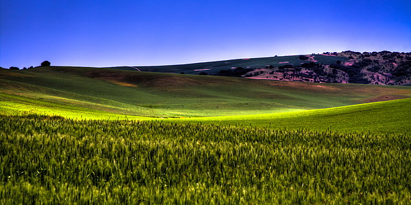 David Patterson - Sliver of Sunlight on the Palouse Hills