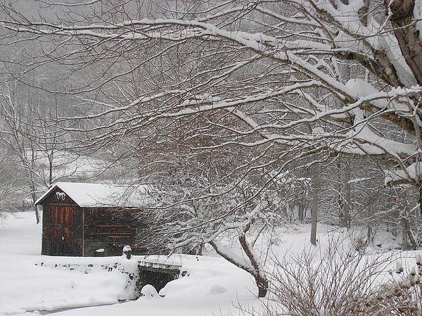 Itai Minovitz - Snow in the country.