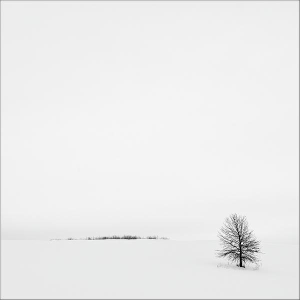 Gary Harris - Solitude