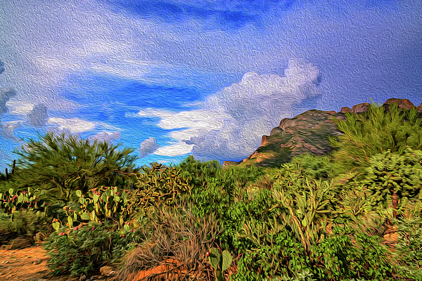 Sonoran Afternoon Op12 Photograph