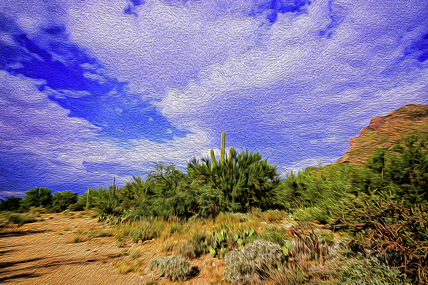 Sonoran Afternoon Op8 Digital Art