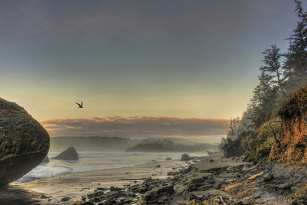 Randall Scholten - South of Port Orford