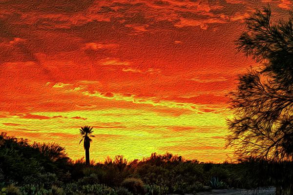 Southwest Sunset Op14 Photograph