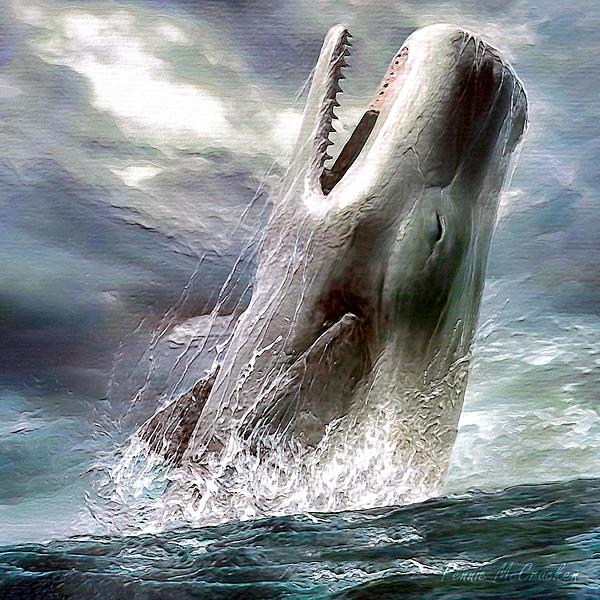Pennie McCracken - Sperm Whale