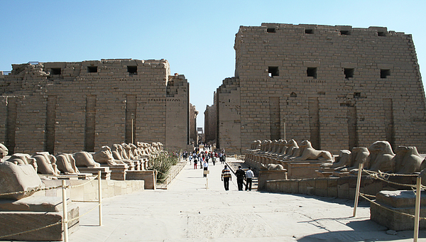 Ayman Alenany - Sphinxes at Temple of Luxor, Egypt