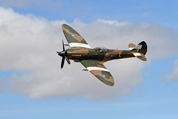 Shoal Hollingsworth - Spitfire Against the Clouds