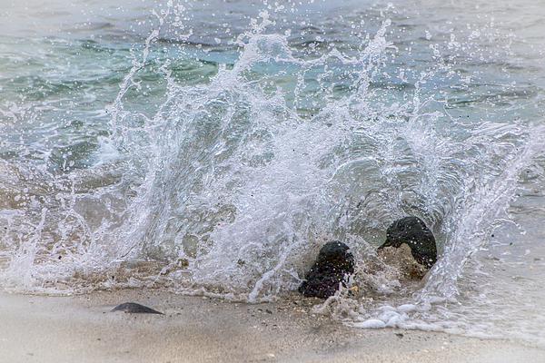 Kristina Rinell - Splash 0776