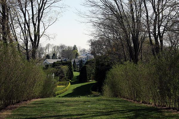 Vadim Levin - Spring at Ladew Topiary Gardens