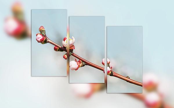 Larysa Koryakina - Spring Awakening. Triptych