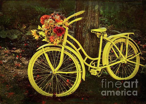 Janice Rae Pariza - Spring Bicycle in Ohio