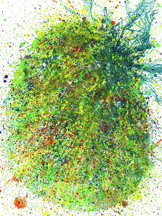 Rainbow Artist Orlando L aka Kevin Orlando Lau - Spring Equinox In The Lost Land Of Mu #528
