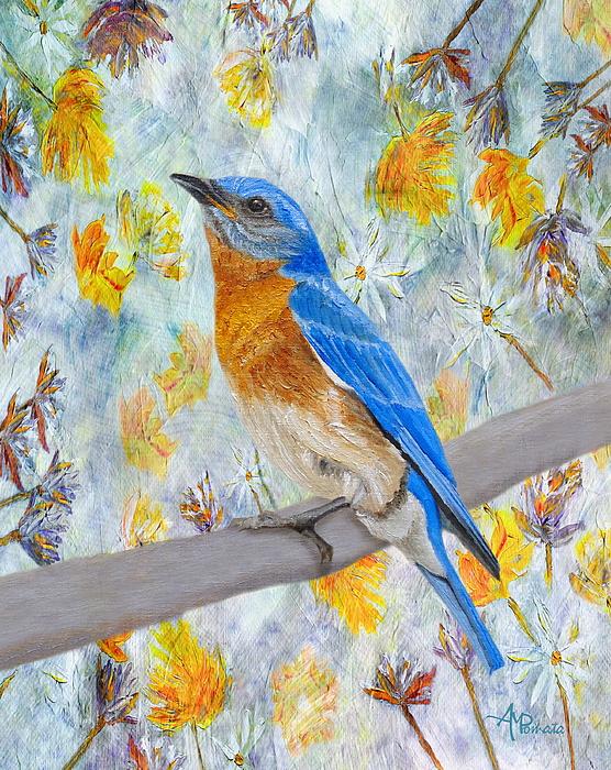 Angeles M Pomata - Springtime Eastern Bluebird