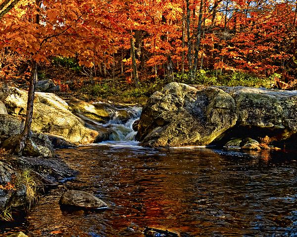 Stream In Autumn 58 Photograph