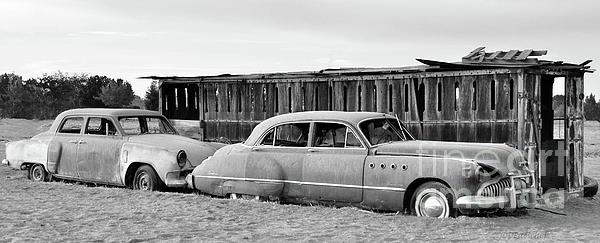 Debby Pueschel - Stuck in the Sand