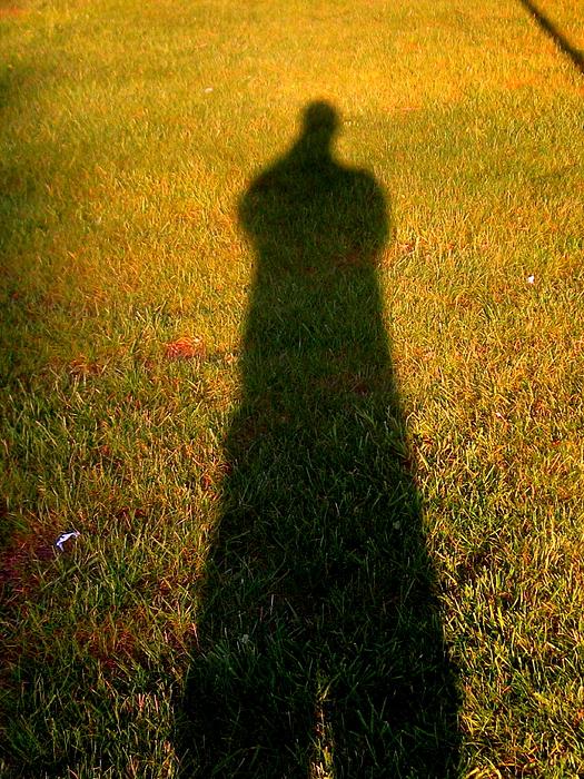 Allen n Lehman - Study Of Grass