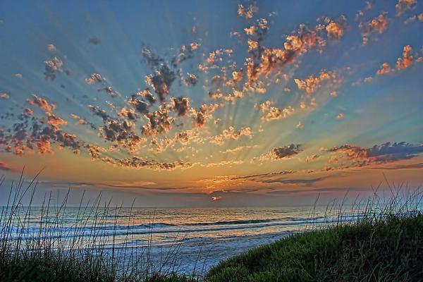 HH Photography of Florida - Sunburst