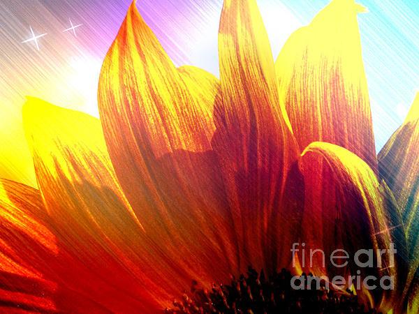 Natasha Lovell - Sunflower