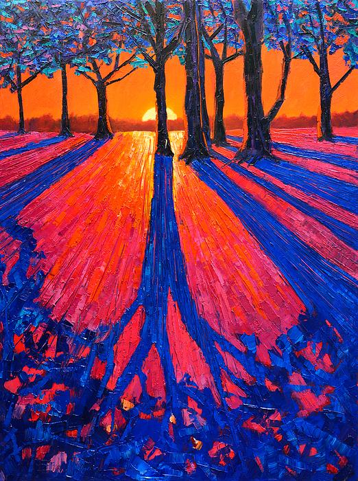 Ana Maria Edulescu - Sunrise In Glory - Long Shadows Of Trees At Dawn