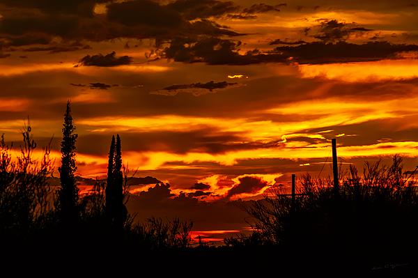 Sunset No.16 Photograph