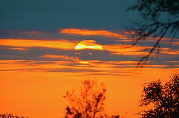 Phillip Dowdell - Sunset