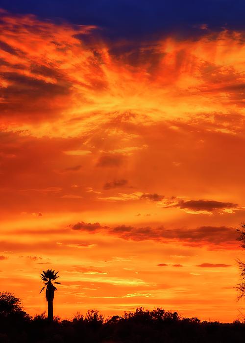 Sunset V414 Photograph