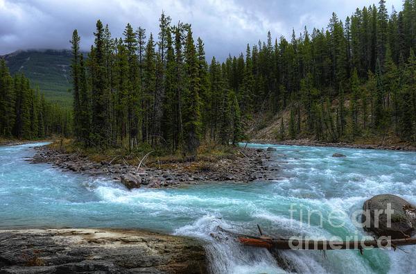 Wayne Moran - Sunwapta Falls Jasper National Park Alberta Canada