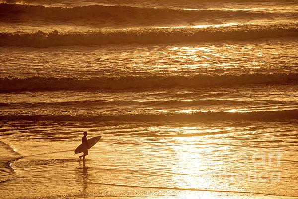 Delphimages Photo Creations - Surfer