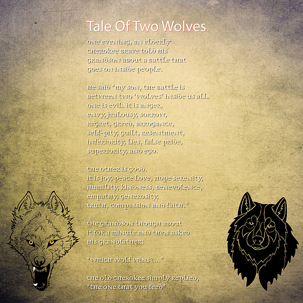 Celestial Images - Tale Of Two Wolves - Art of Stories