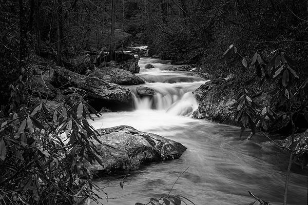 Doug Camara - Tallulah River in BW