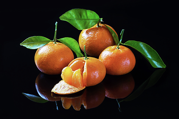 Loylun Dao - Tangerines on a black background